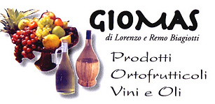 LOGO GIOMAS.png