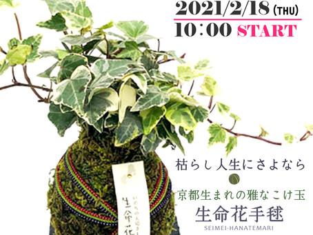 Makuakeさんに花工房が登場します