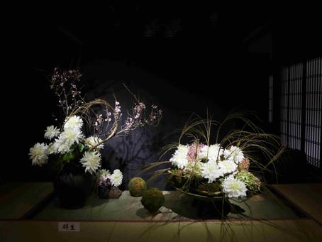 昨年の花展