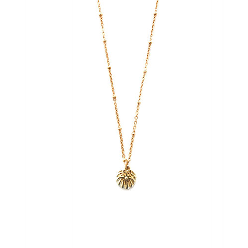 star- shell necklace gold