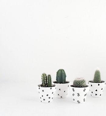 DIY-Mini-Patterned-Plant-Pots-2-1.jpg