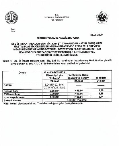 sertifika2.png