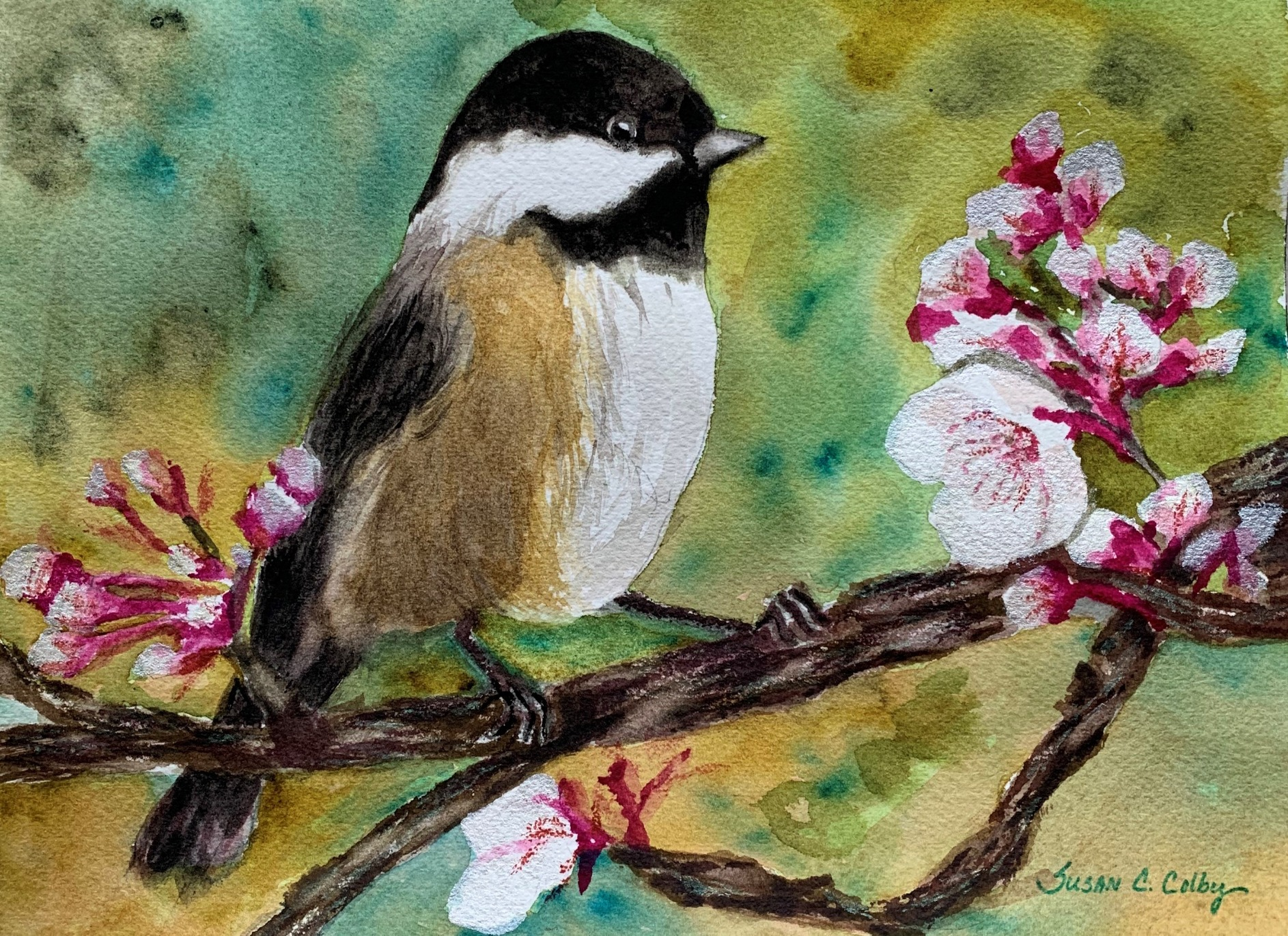 Cherry Blossoms and Bird