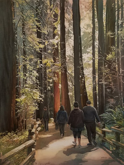 Reign Of The Redwoods