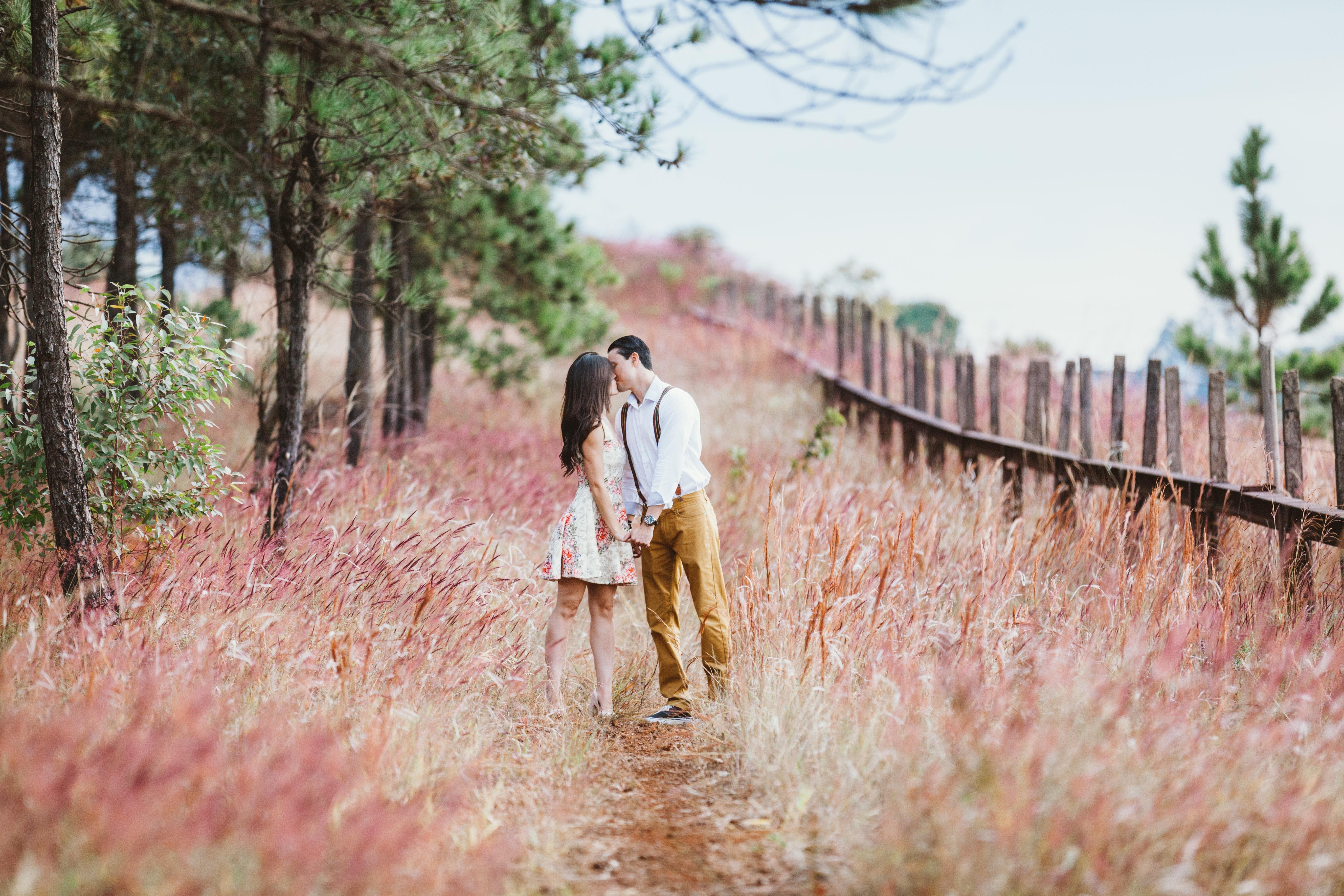 adult-beautiful-blur-bride-219776