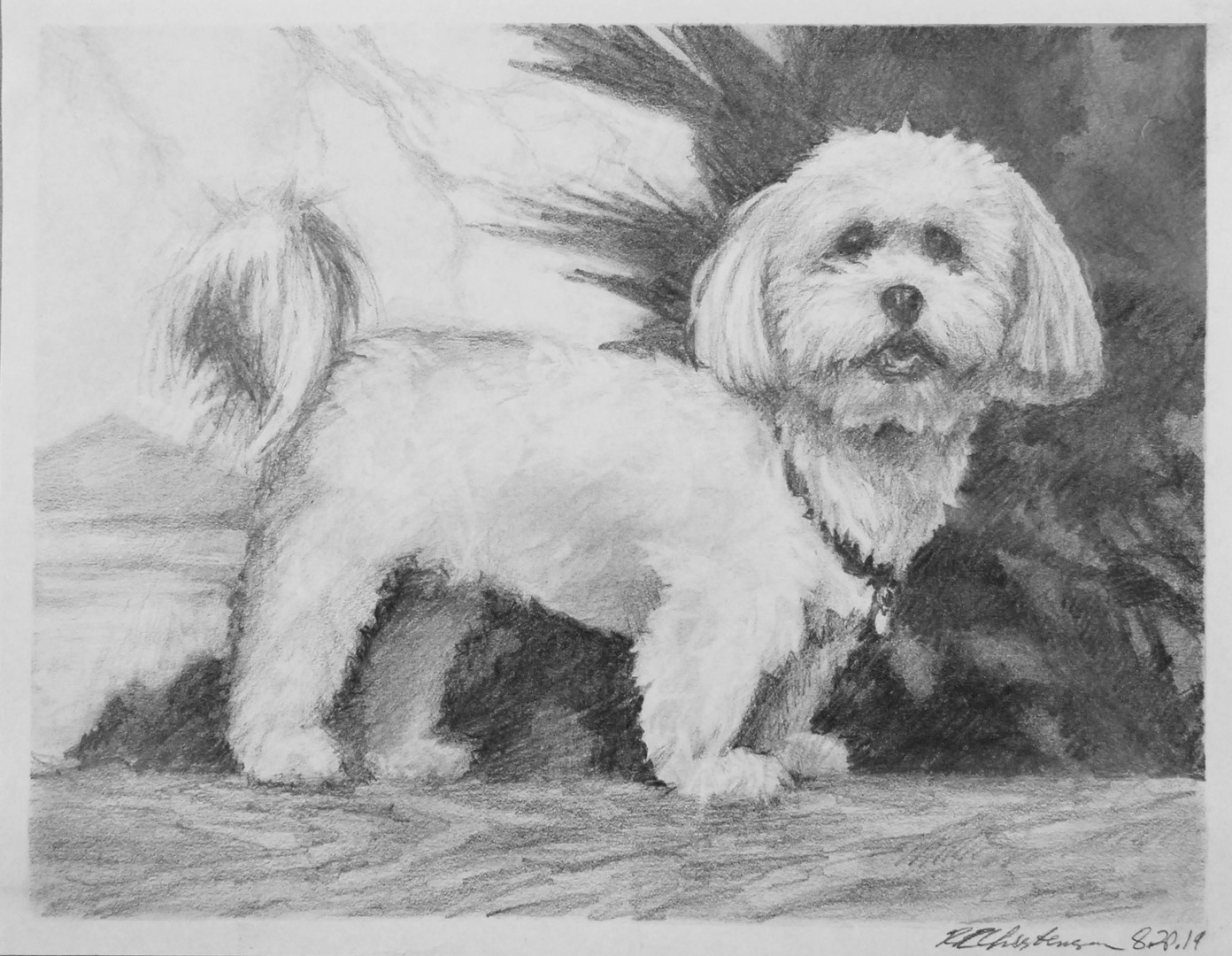 Heather Cochran doggo portrait copy.jpg