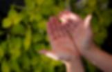 hands_002.png