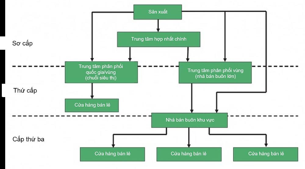 Các mô hình phân phối ở Việt Nam