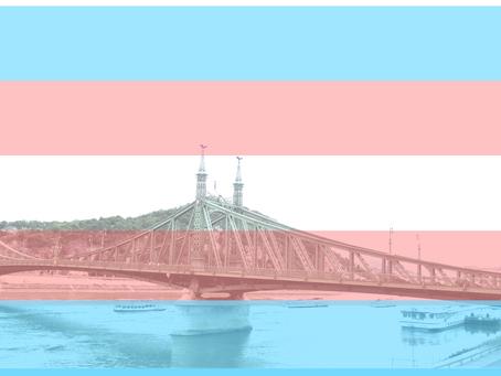 Dreamwear Club ry tuomitsee Unkarin pääministerin transihmisten oikeuksia polkevan lakiehdotuksen