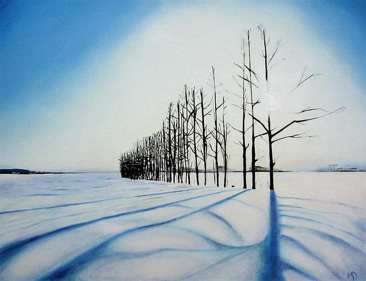 Snow Trees II
