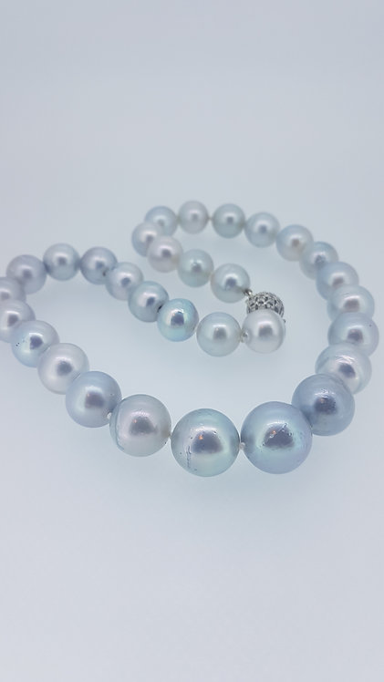 Grey South Sea pearls