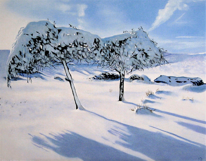 Snow Trees in Derbyshire