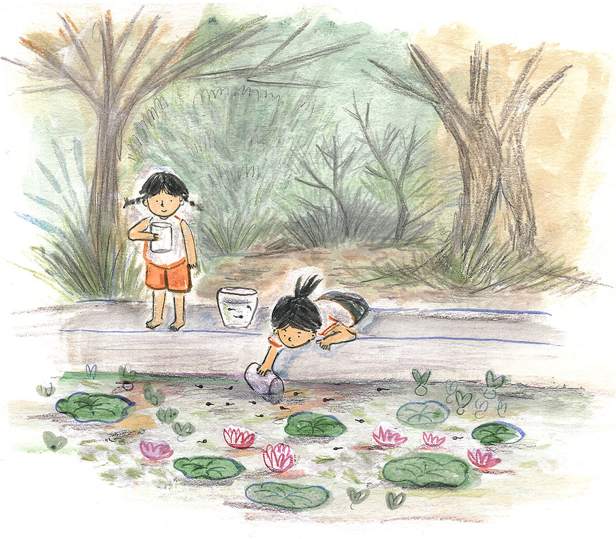 maria winardi illustration - tadpoles.jp