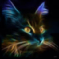 Pet Remembrance, Love of Cats, Punky Diva Cat,