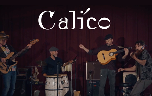 calico-still.png