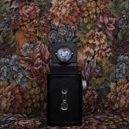 Aaron Sterling Photography / Wedding Photographer