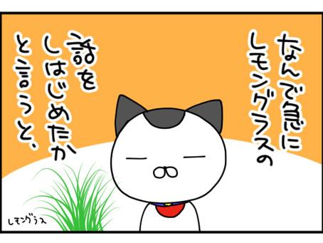 【精油解説】レモングラス