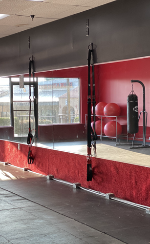 TRX & Boxing Area