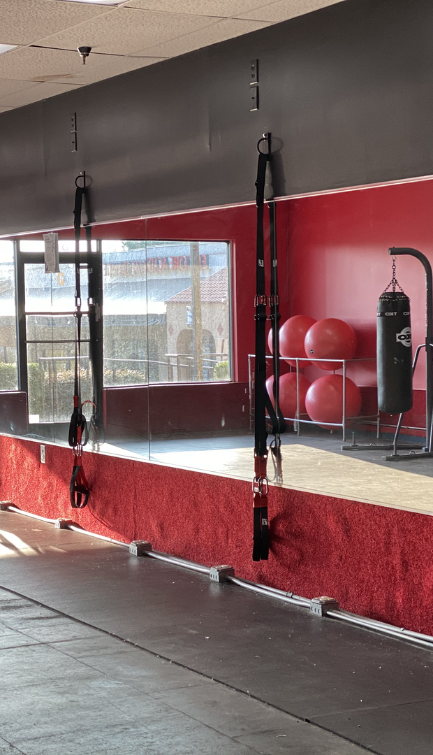 TRX & Boxing Area