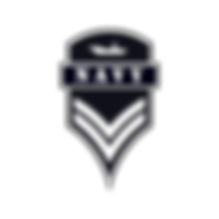 Navy-2 (1).png