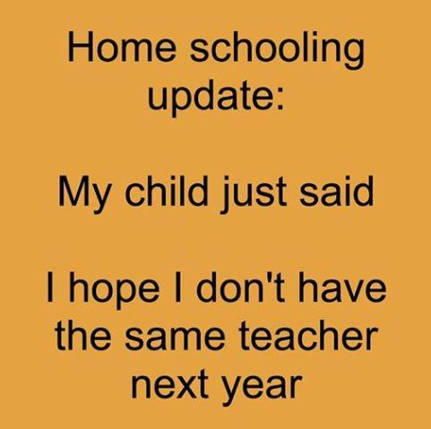 Home schooling success?