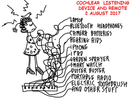 COCHLEAR IMPLANT EXPERIENCES