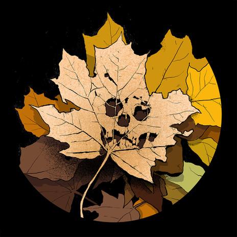Brown Leaf Vertigo