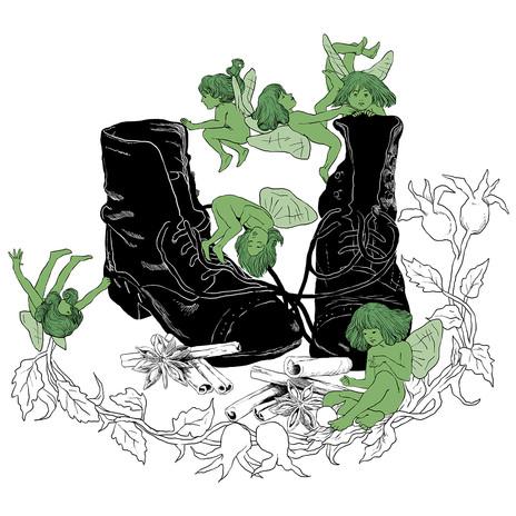 Faeries Wear Boots