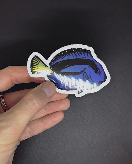 Holographic Blue Tang Sticker