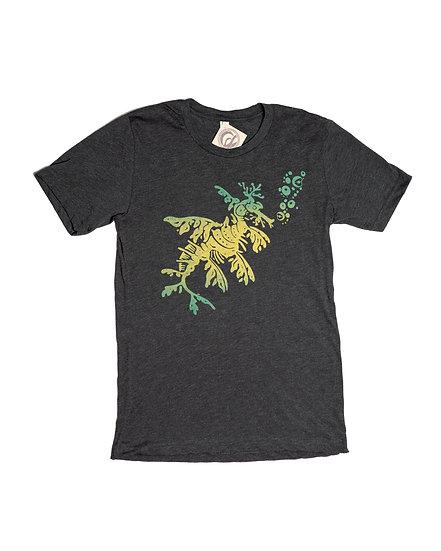 Leafy Sea Dragon