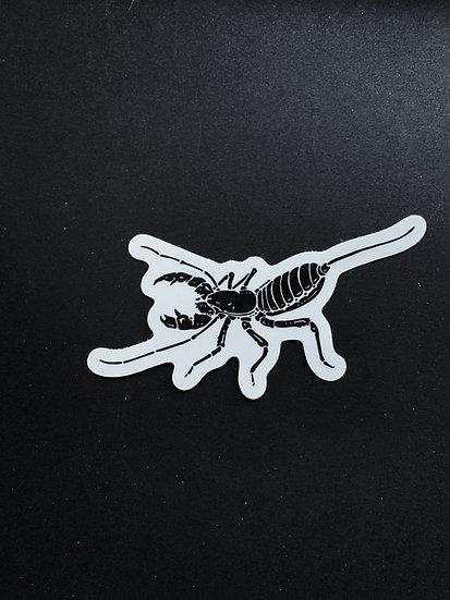 Vinegaroon Sticker