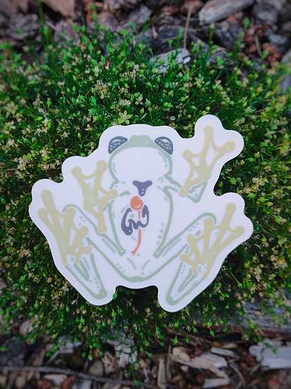 Frosted Northern Glass Frog Sticker