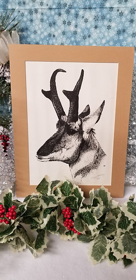 Matted Pronghorn Print