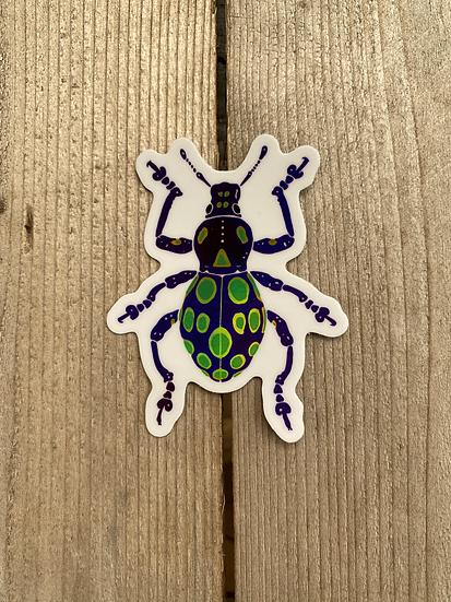 Holographic Pachyrhynchus Gemmatus Weevil Sticker