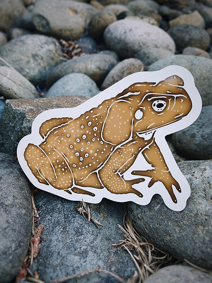 Cane Toad Sticker