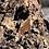 Thumbnail: Wooden Wolf Pin