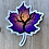 Thumbnail: Maple Leaf w/ Tree Holographic Sticker