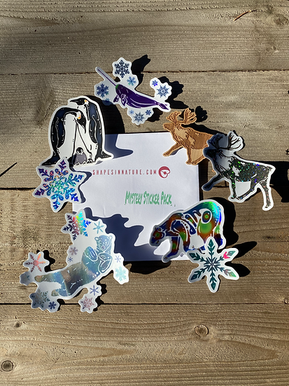 2020 Winter Mystery Sticker Packs
