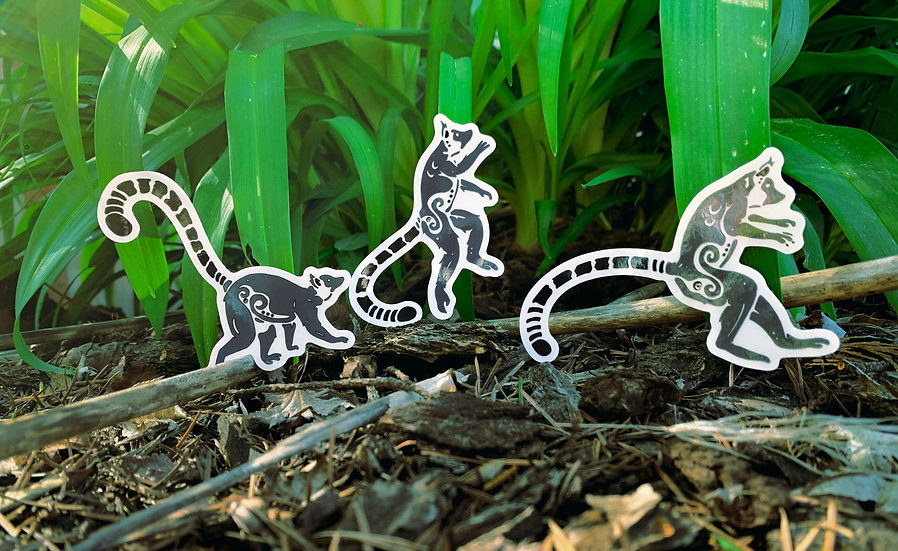 Ring-tailed Lemur Sticker Set