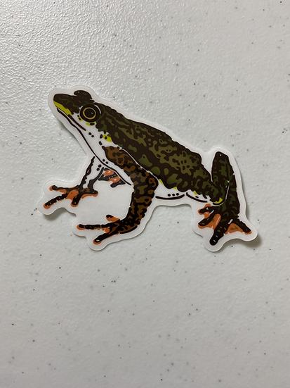Rio Faisanes Stubfoot Toad Sticker