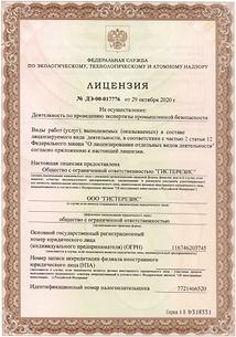 Лицензия ИПБ Гистерезис.PNG