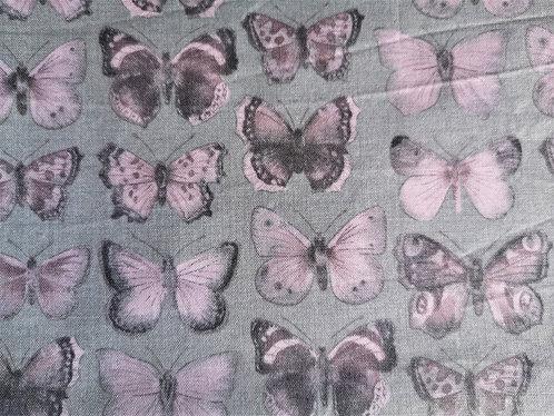 Papillon pâle