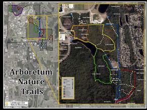 UCF MTB Trail Build Day
