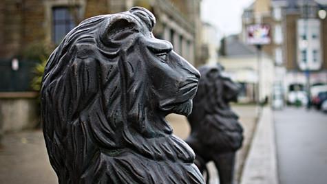 Penzance Lions
