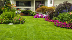 landscaping services wake forest nc.jpg