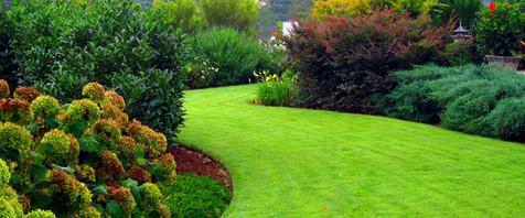 landscaping companies in durham nc.jpg