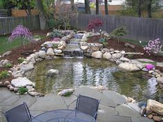 pond design and installation wake forest
