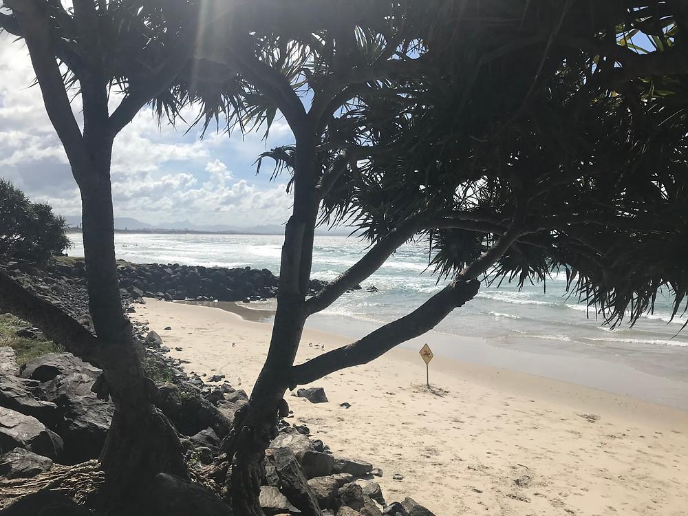 Beach in Byron