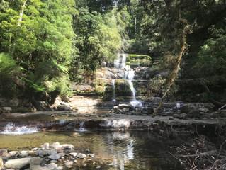 Blog 10: Tasmania & Victoria - Low Head to Shallow Inlet