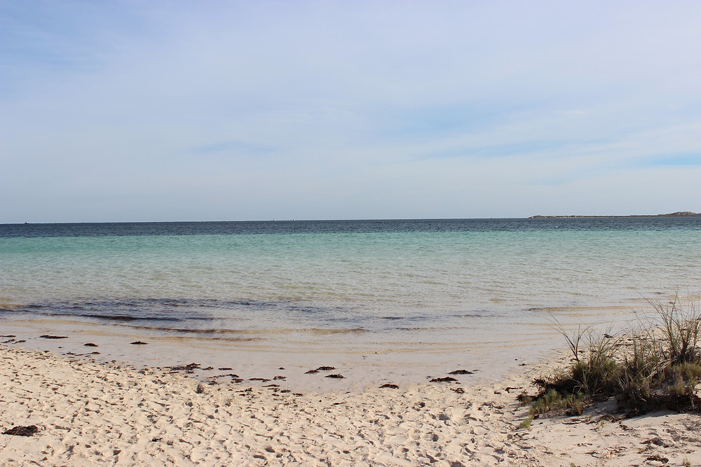 Calm Coral Bay